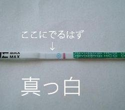 Dscf0045_1