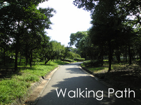 Walking_path
